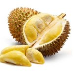 durian zapachavy Durio zibethinus